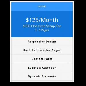 BigTinyDesigns Intern Web Design Package