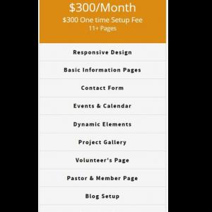 BigTinyDesigns Executive Web Design Package