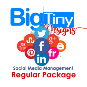 Social Media Management Regular Package